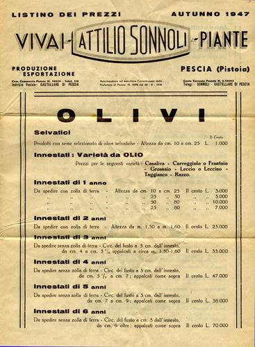 Vivai Attilio Sonnoli